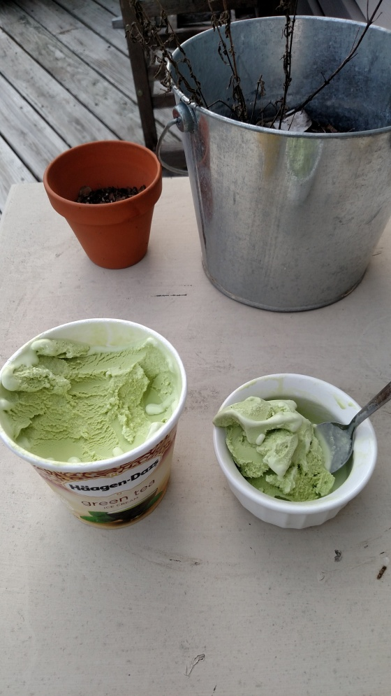 HaagenGreenTeaIceCream