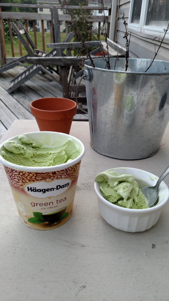 HaagenGreenTeaIceCream2