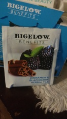 BigelowBalanceBag2